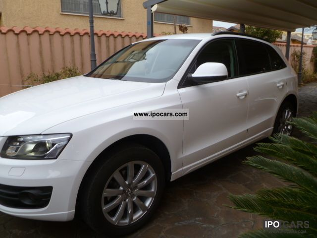 2010 audi q5 2 0 tdi come nuova ottimo affare car photo and specs. Black Bedroom Furniture Sets. Home Design Ideas