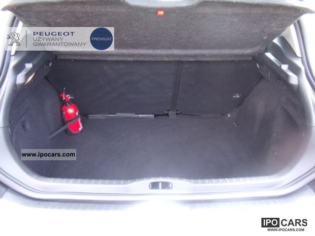 2010 peugeot 308 owners manual