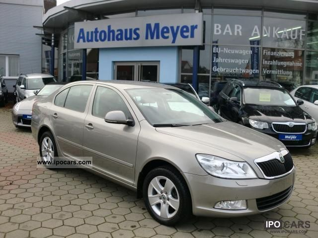 2011 skoda octavia elegance tdi alu 4xefh telefon climatr car photo and specs. Black Bedroom Furniture Sets. Home Design Ideas